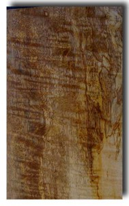 Spalted Mango : €600