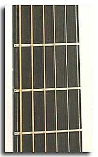 Fretboard Binding Ebony + black/white/black stripes : €150