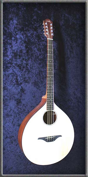 Irish Bouzouki Basic