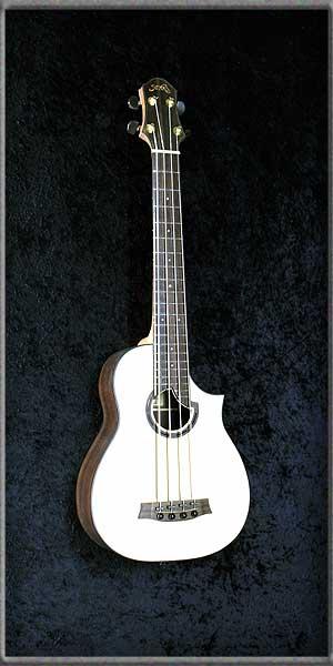 Bass Ukulele frets cutaway